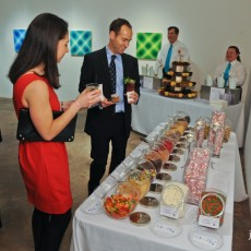 Dallas Museum of Art Young Associates Party